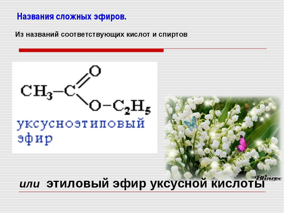 Названия сложных эфиров. или этиловый эфир уксусной кислоты Из названий соотв...