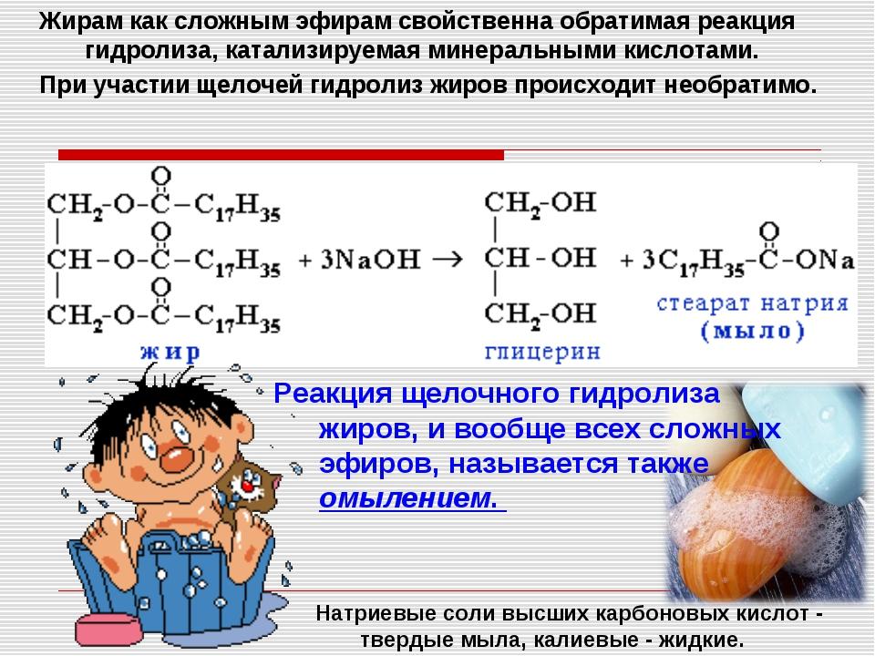 Жирам как сложным эфирам свойственна обратимая реакция гидролиза, катализируе...
