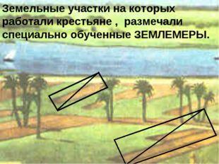 Земельные участки на которых работали крестьяне , размечали специально обучен