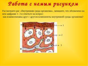 Работа с немым рисунком Рассмотрите рис «Внутренняя среда организма», запишит
