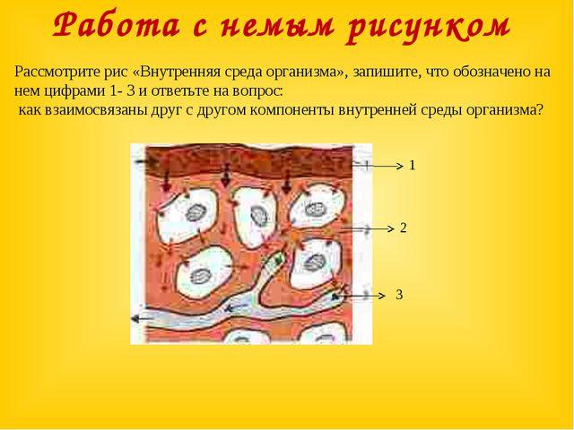 Работа с немым рисунком Рассмотрите рис «Внутренняя среда организма», запишит...