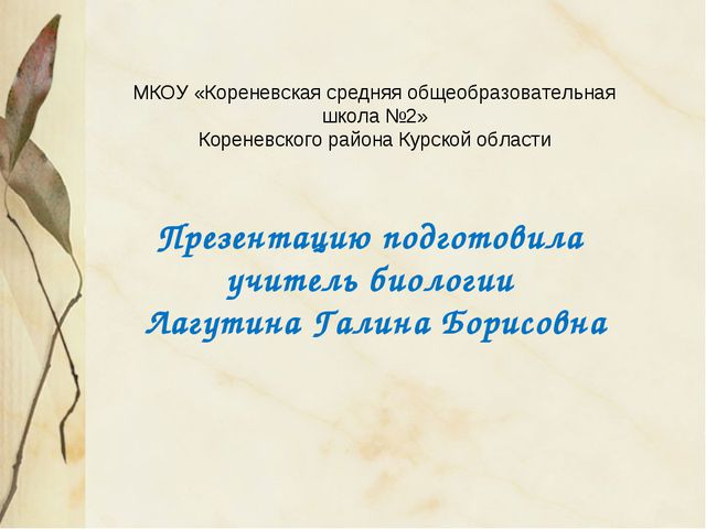 МКОУ «Кореневская средняя общеобразовательная школа №2» Кореневского района...