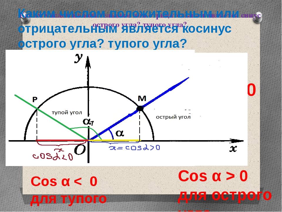 Каким числом положительным или отрицательным является синус острого угла? туп...