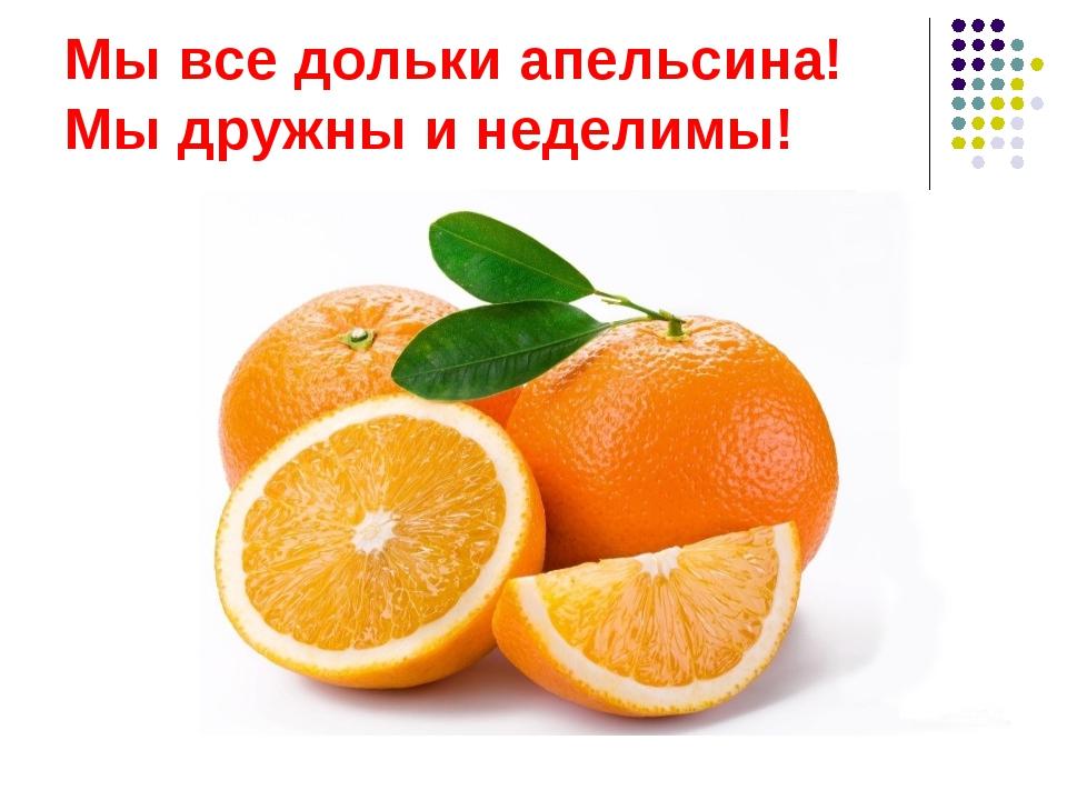 Мы все дольки апельсина! Мы дружны и неделимы!