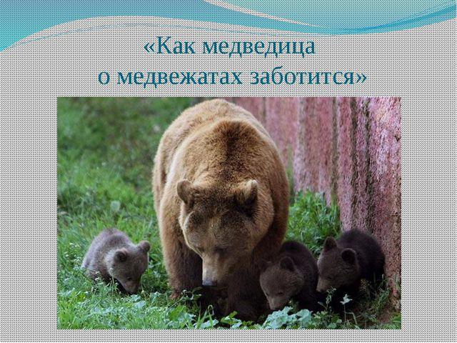 «Как медведица о медвежатах заботится»