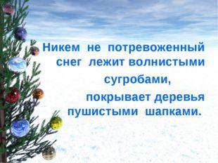 Никем не потревоженный снег лежит волнистыми сугробами, покрывает деревья пу