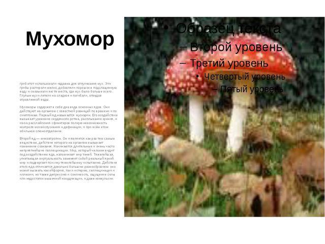 Мухомор гриб этот использовали издавна для отпугивания мух. Эти грибы растира...