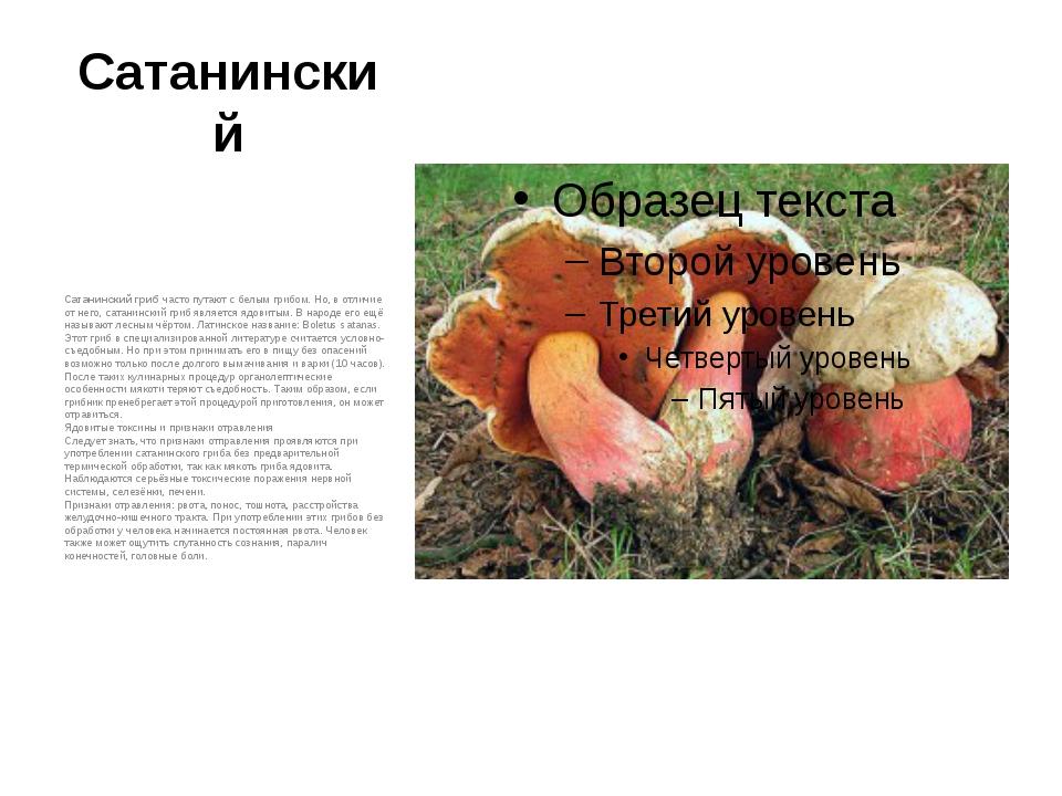 Сатанинский Сатанинский грибчасто путают с белым грибом. Но, в отличие от не...