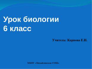 Урок биологии 6 класс Учитель: Карпова Е.Н. МБОУ «Михайловская СОШ»