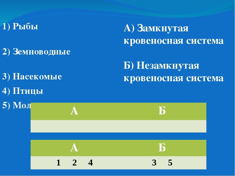 1) Рыбы 2) Земноводные 3) Насекомые 4) Птицы 5) Моллюски А) Замкнутая кровено...