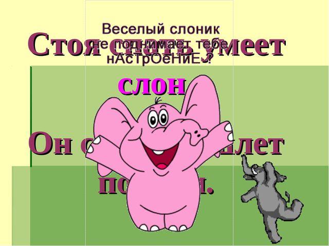 Стоя спать умеет слон. Он слонихе шлет поклон.