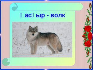 Қасқыр - волк