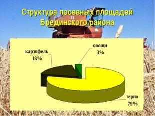 Структура посевных площадей Брединского района