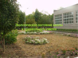 Экологическое состояние школы и пришкольного участка