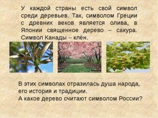 У каждой страны есть свой символ среди деревьев. Так, символом Греции с древн