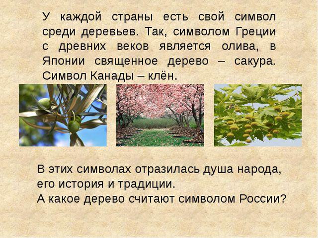 У каждой страны есть свой символ среди деревьев. Так, символом Греции с древн...