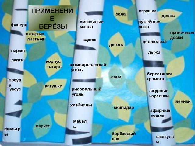 Мы смогли выяснить, почему берёзу называют символом России: у славян – священ...
