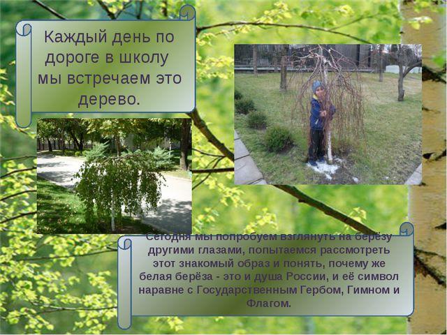 Цель работы: выяснить, почему из всех деревьев русский народ символом России...