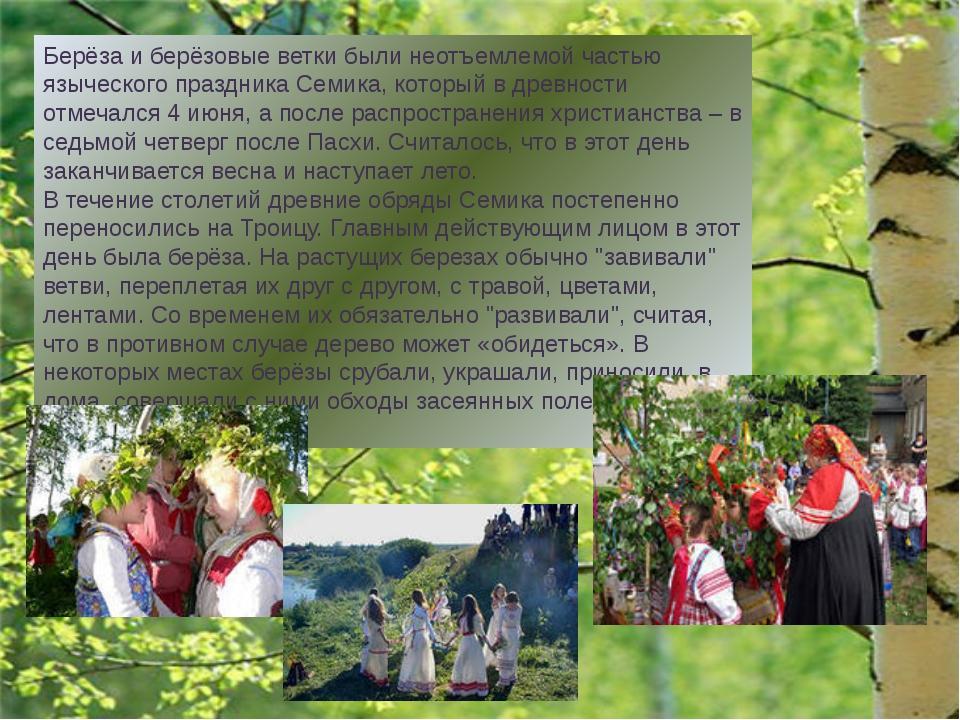 """В старину о берёзе говорили, как о дереве """"о четырёх делах"""" Первое дело - мир..."""