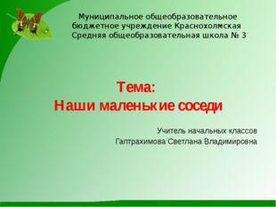 Муниципальное общеобразовательное бюджетное учреждение Краснохолмская Средняя