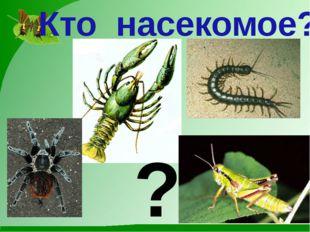 Кто насекомое? ?