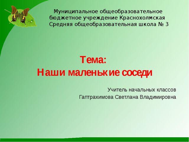 Муниципальное общеобразовательное бюджетное учреждение Краснохолмская Средняя...
