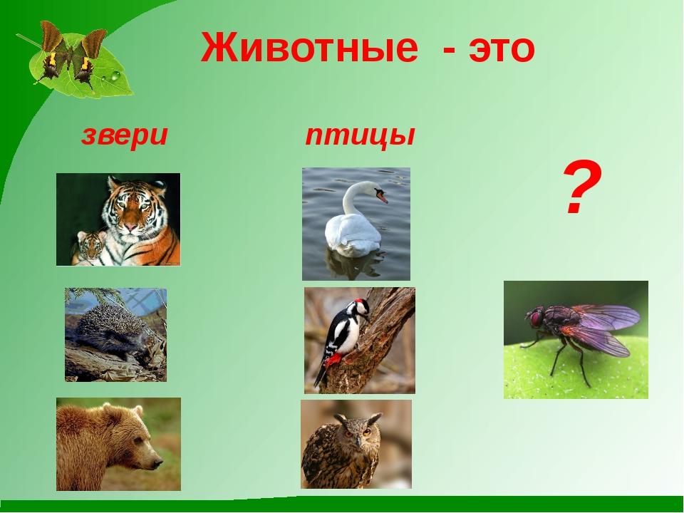 Животные - это звери птицы ?