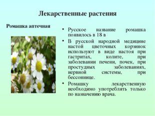 Лекарственные растения Русское название ромашка появилось в 18 в В русской на