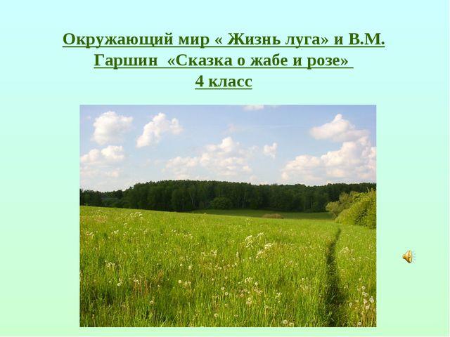 Окружающий мир « Жизнь луга» и В.М. Гаршин «Сказка о жабе и розе» 4 класс