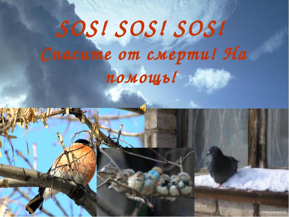 SOS! SOS! SOS! Спасите от смерти! На помощь!