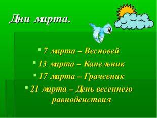 Дни марта. 7 марта – Весновей 13 марта – Капельник 17 марта – Грачевник 21 ма