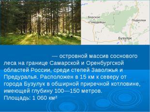 Бузулу́кский бор — островной массив соснового леса на границе Самарской и Оре