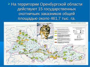 На территории Оренбургской области действуют 15 государственных охотничьих за