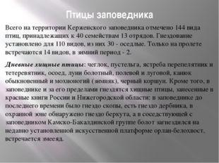 Птицы заповедника Всего на территории Керженского заповедника отмечено 144 ви