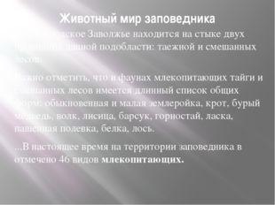 Животный мир заповедника Нижегородское Заволжье находится на стыке двух прови