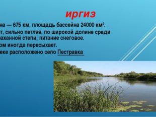 иргиз Длина— 675км, площадь бассейна 24000 км². Течёт, сильно петляя, по ши