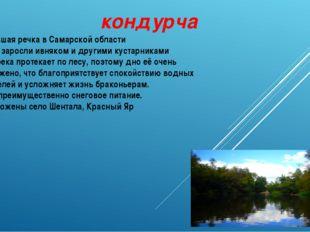 кондурча Небольшая речка в Самарской области Берега заросли ивняком и другими