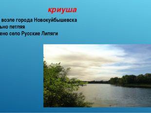 криуша Протекает возле города Новокуйбышевска Течёт, сильно петляя Расположен