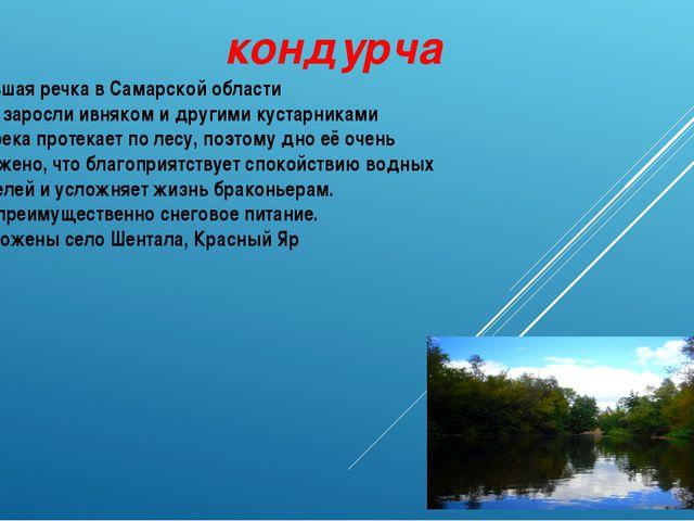 кондурча Небольшая речка в Самарской области Берега заросли ивняком и другими...