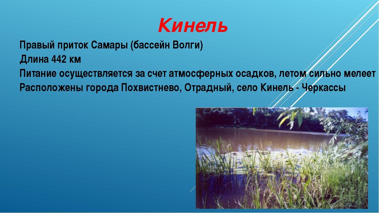 Кинель Правый приток Самары (бассейн Волги) Длина 442 км Питание осуществляет...