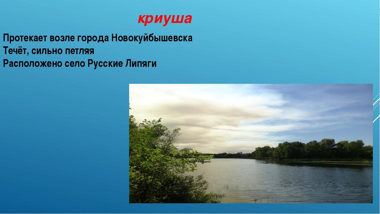 криуша Протекает возле города Новокуйбышевска Течёт, сильно петляя Расположен...
