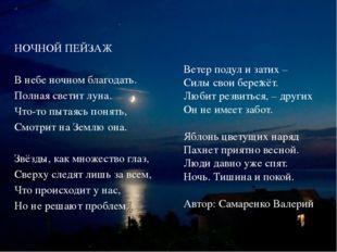 НОЧНОЙ ПЕЙЗАЖ В небе ночном благодать. Полная светит луна. Что-то пытаясь пон