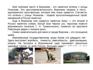 Моё любимое место в Воронеже - это памятник котёнку с улицы Лизюкова. Это дос