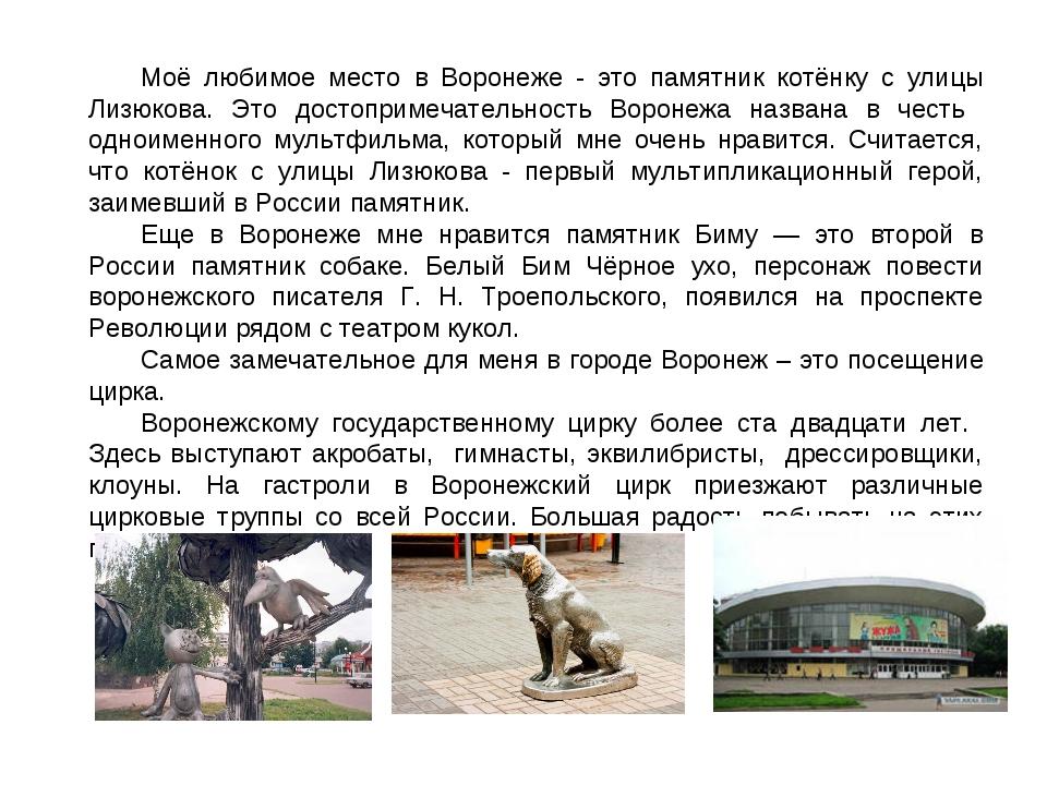 Моё любимое место в Воронеже - это памятник котёнку с улицы Лизюкова. Это дос...