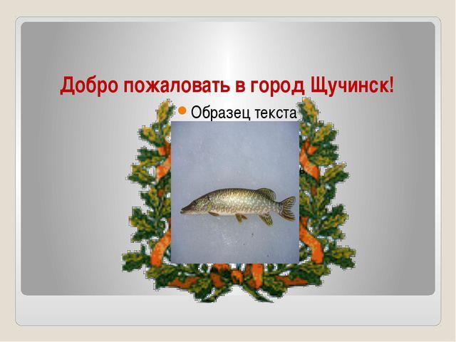 Добро пожаловать в город Щучинск!
