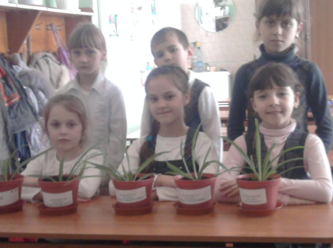 C:\Users\Саша\Desktop\Фотографии\Садим цветы фото\101MSDCF\Фото для школы\Фото0096.jpg