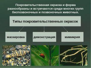 Покровительственная окраска и форма разнообразны и встречаются среди многих г