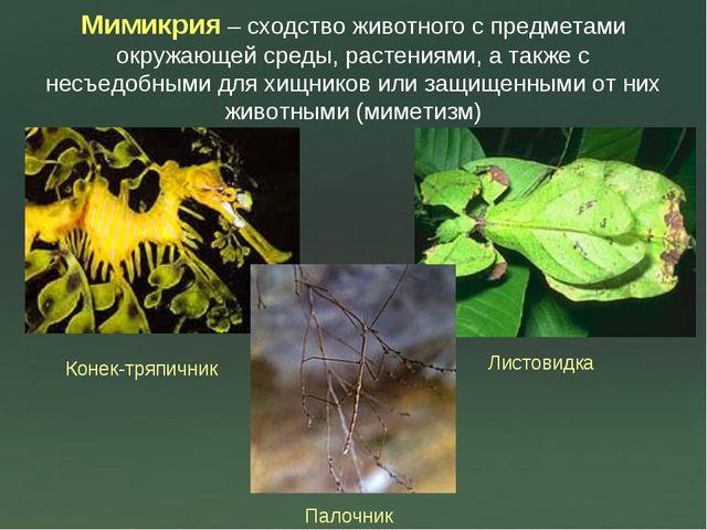 Мимикрия – сходство животного с предметами окружающей среды, растениями, а та...