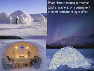 Polar climate results in treeless tundra, glaciers, or a permanent or semi-pe