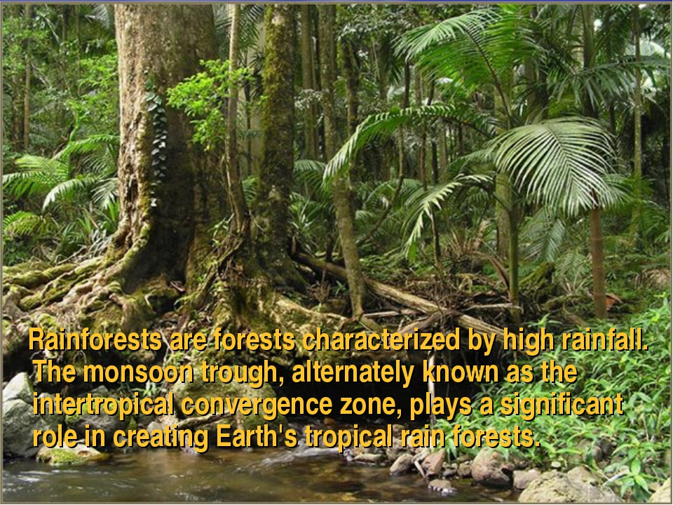 Rainforests are forests characterized by high rainfall. The monsoon trough,...